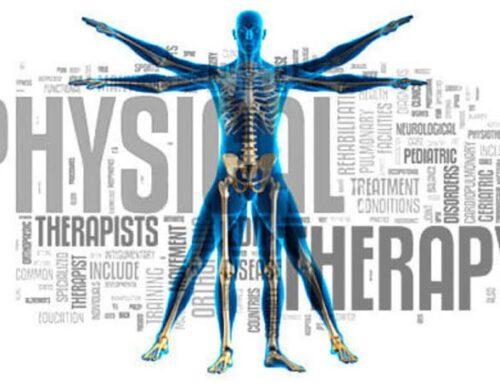 Fysioterapia Palvelut